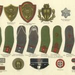Akademisk Skyttekorps - Gradstegn, 1916