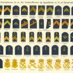 Flåden - Gradstegn, underofficerer, 1916
